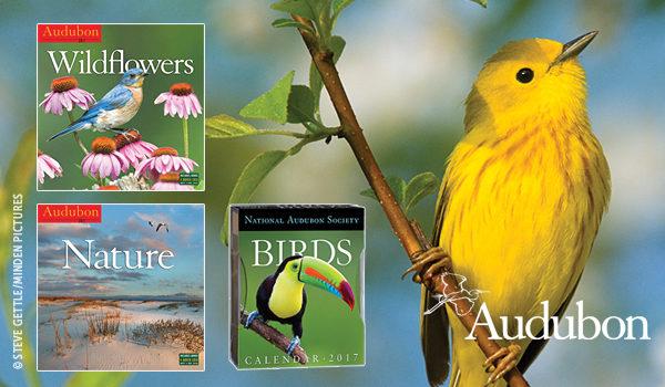 Introducing the 2017 Audubon Calendars!  thumb