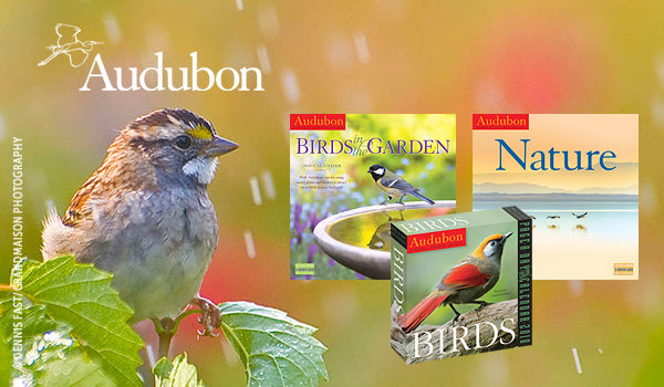 Introducing the 2018 Audubon Calendars!  thumb